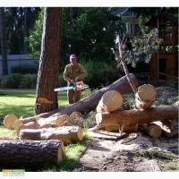 Удаление и обрезка деревьев