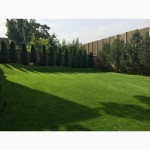 Купить газон по оптовой цене в Москве
