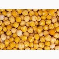 ООО НПП Зарайские семена реализует фуражный горох, затаренный в мешках, оптом и в розницу
