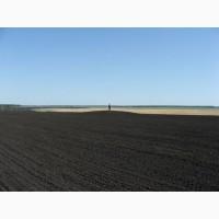 Земельный участок сельхозназначения 750 Га