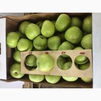 Принимаем заявки на поставки Зимних Сортов Яблок