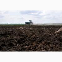 Земельный участок сельхозназначения 105 Га