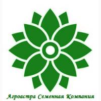 Семена ярового ячменя Ратник ЭС/РС1/РС2