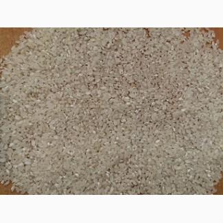 Рис дробленный сеченый оптом