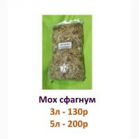 Мох сфагнум/ кокосовый субстрат для улиток Ахатина / Архахатина