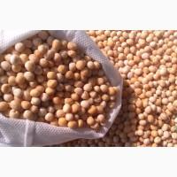 ООО НПП «Зарайские семена» купит фуражное зерно: горох от 40 т