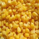 Продаем кукурузу оптом
