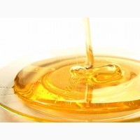 Мёд липовый лучше ГОСТа (документ в объявлении) оптом