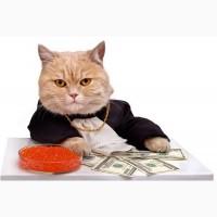 Кредит без предоплат, только положительный результат, работаем по РФ