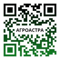 Семена озимой пшеницы сорт Агат Донской, Капитан, Зерноградка11, Изиминка, Аксинья