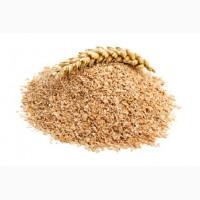 ООО НПП Зарайские семена продает отруби пшеничные, в мешках оптом и в розницу