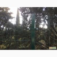 3Д забор, Еврозабор 1030x2500x4 мм. Порошковое окр