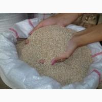 Пшеничная крупа марки М и Т