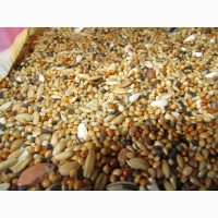 Смеси кормовые для с/х птицы (ксм, крупка) на постоянной основе