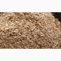 ООО НПП «Зарайские семена» закупает отруби пшеничные от 20 тонн