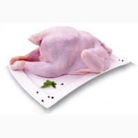 Куриное мясо, мясо цб, мясо Говядины