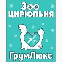 Стрижка собак и кошек всех пород