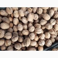 Продам грецкие орехи, урожай 2017 года