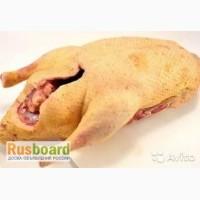 Продаю Мясо Птицы